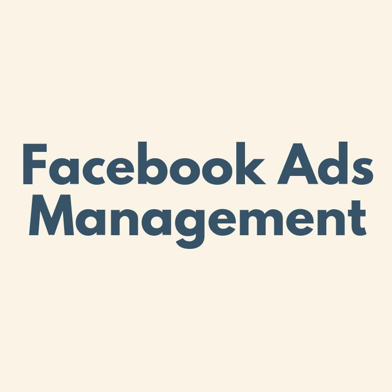 facebook ads management 1