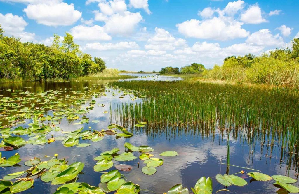 Everglades National Park is another USA bucket list item.