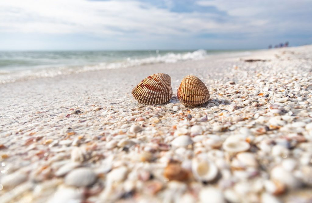 One of the best beaches in the USA is Bowman's Beach in Sanibel Island.