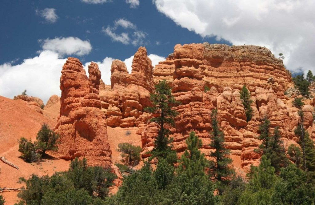 Be sure to add Dixie National Forest to your list of Las Vegas day trips.