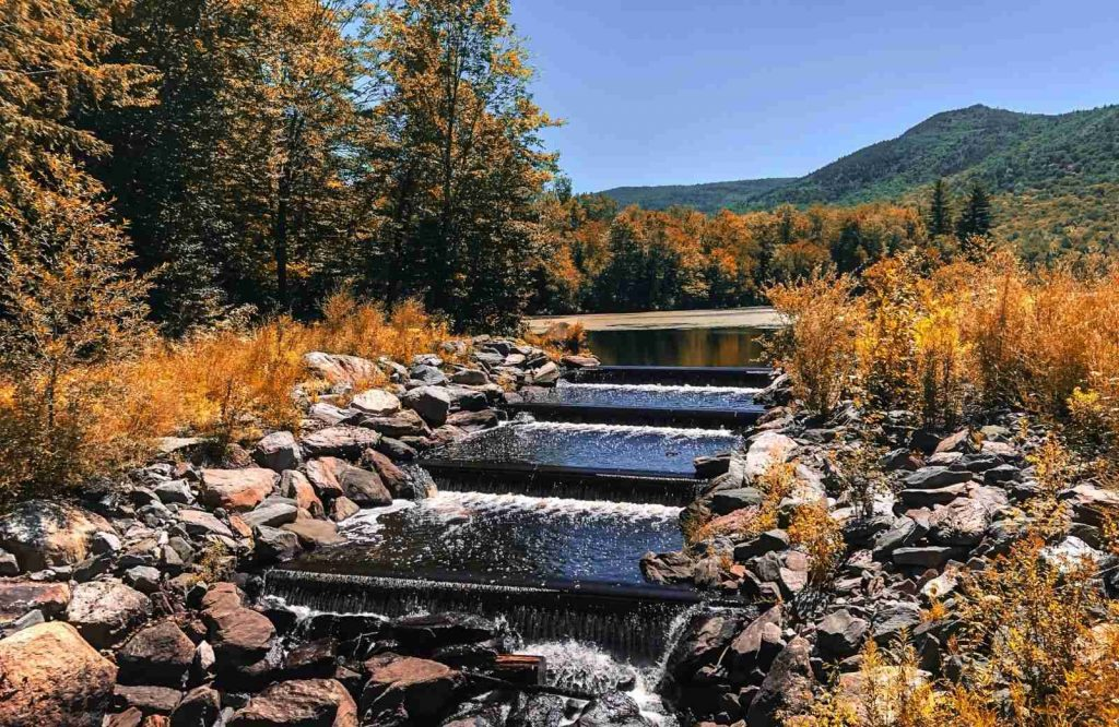If you're looking for places to stop on a Vermont road trip, stop at Green Mountain National Forest.