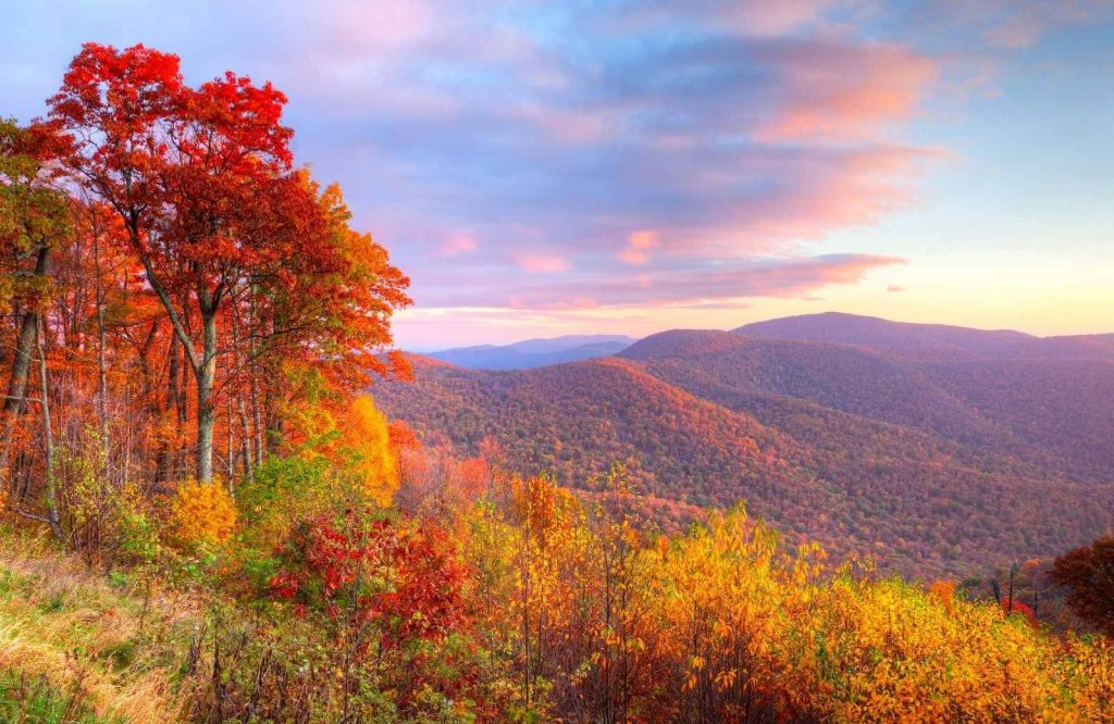 One of many national parks on the East Coast is Shenandoah National Park.