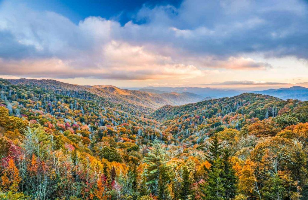 Smoky Mountains National Park is one of several national parks on the East Coast.