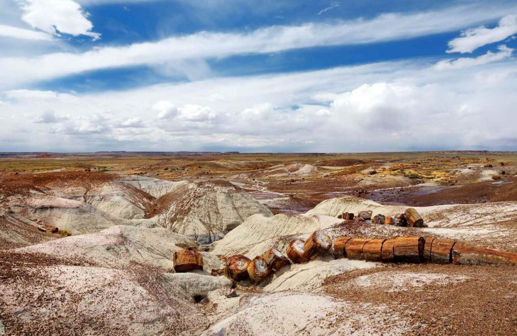 Petrified Forest National Park is one of the coolest things to see on Route 66.