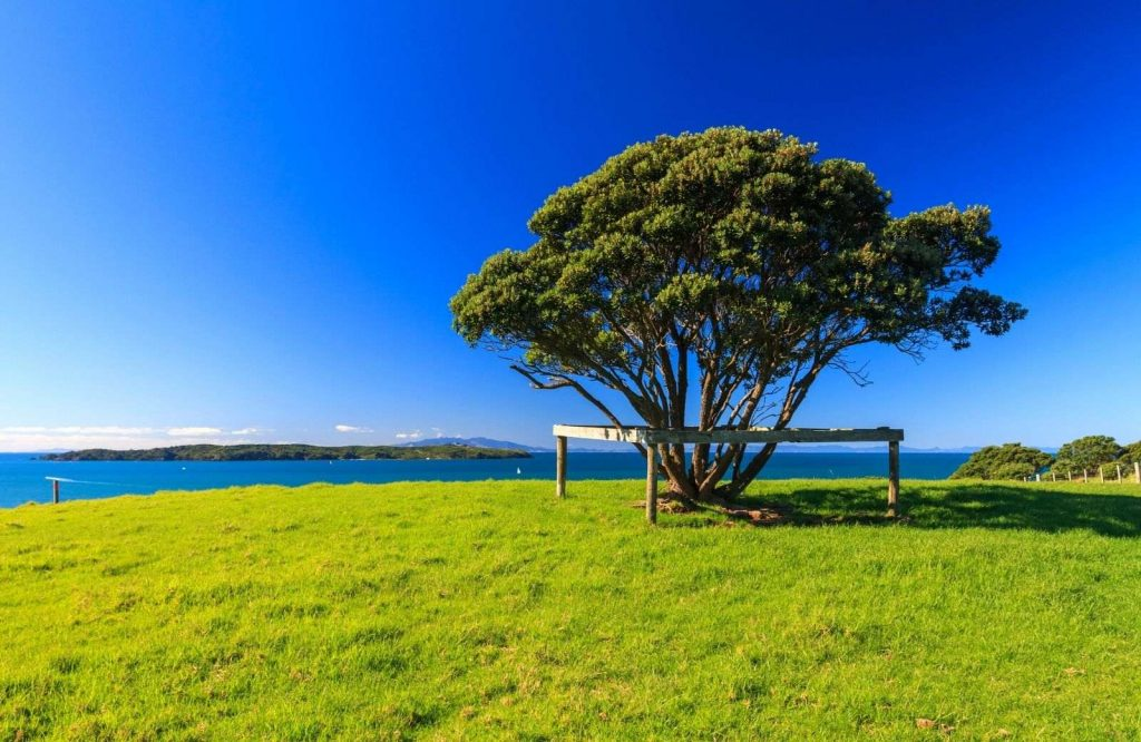 Add Shakespear Regional Park to your list of day trips from Auckland.