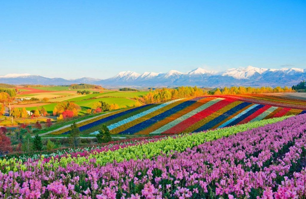 Hokkaido - colorful islands in Asia