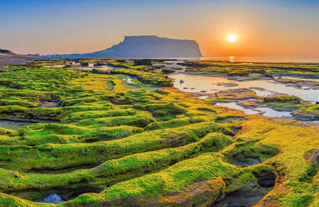 Jeju Island is one of many interesting islands in Asia.